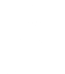 6625647102